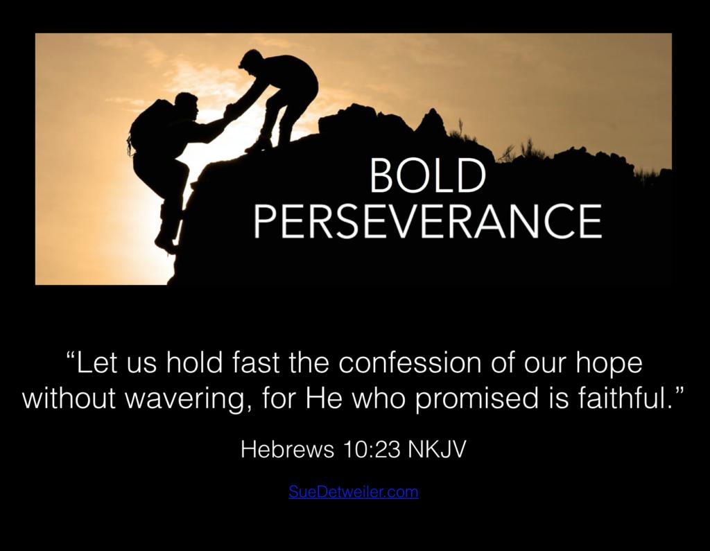 bold perseverance sue detweiler